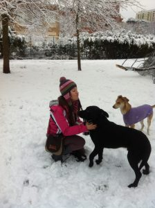 cani-sulla-neve